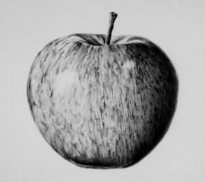 b & w apple