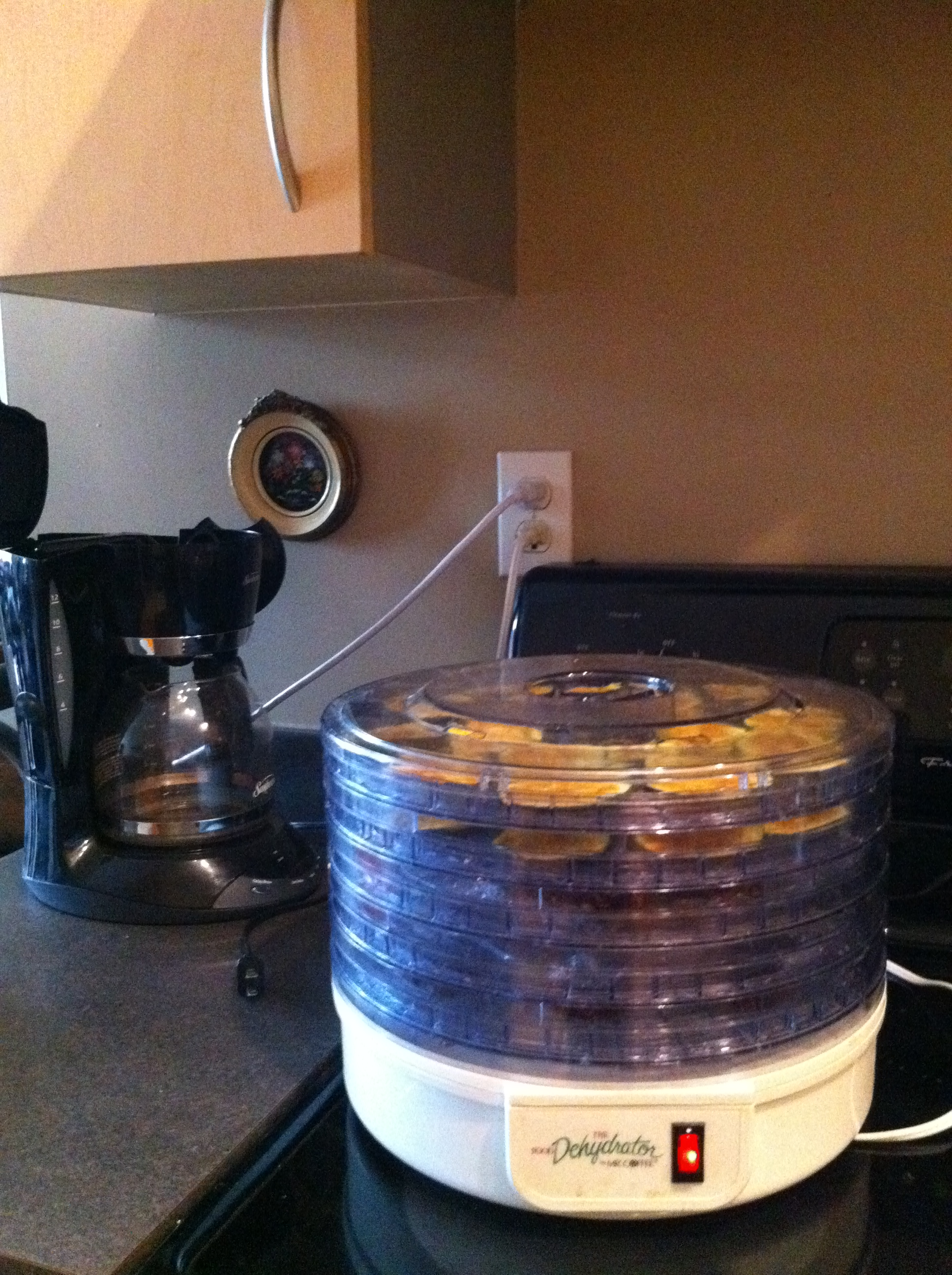 Mr Coffee Microwave Coffee Maker : Drying Apples - Fruit Share
